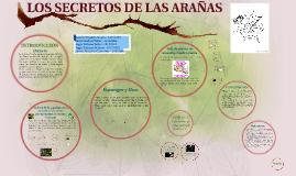 LOS SECRETOS DE LAS ARAÑAS