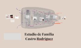 Estudio de Familia Castro Rodríguez