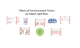 Effects of Environmental Toxins