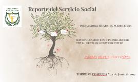 Reporte del Servicio Social