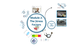 Module 2: The Stress Factors