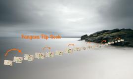 Pangaea Flip Book