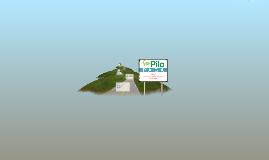 SER PILO PAGA 2