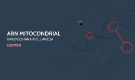 ARN MITOCONDRIAL