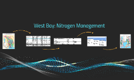 West Bay Nitrogen Management Alternatives