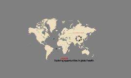 WSU presentation on global health research - 4-6-15