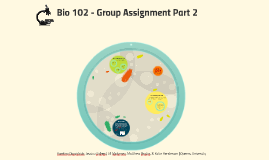 Bio 102 - Group Assignment Part 2