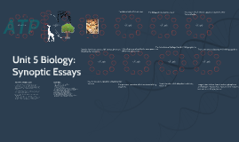 list of biology synoptic essays