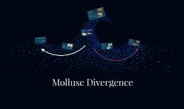 Mollusc Divergence