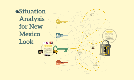 Situation Analysis for New Mexico Look