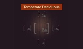 Temperate Deciduous