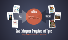 Save Endangered Orangutans and Tigers