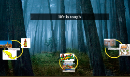 life is a forest