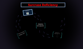 Surcrase deficiency