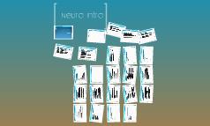 Neuro Intro