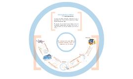Ciclo de Solucion de Problemas