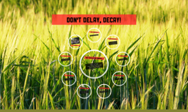 don't delay, decay!