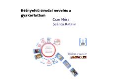 Angol kétnyelvű óvodák a gyakorlatban