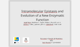 Intramolecular Epistasis and Evolution of a New Enzymatic Fu
