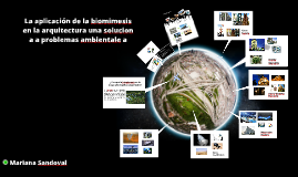 Biomimesis en la arquitectura