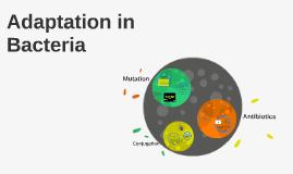 AS Genetics of Bacteria