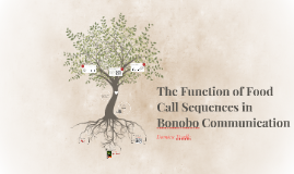 The Function of Call Sequences in Bonobo Communication