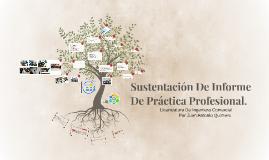 Sustentación De Práctica Profesional.