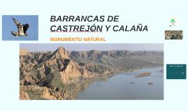 BARRANCAS DE CASTREJÓN Y CALAÑA