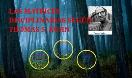 Copy of LAS MATRICES DISCIPLINARIAS