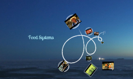 Food Systems Perspectives