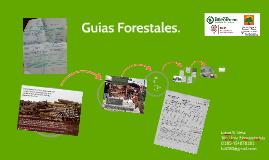 Copy of Guías Forestales y Sistema de Digitalización de Información.