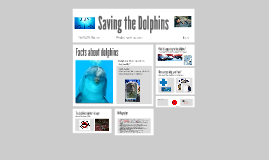 Saving the Dolphins