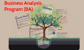 Business Analysis Program