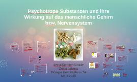 Drogen/Psychotrope Substanzen; Wirkung aufs Gehirn