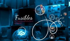 Copy of FUSIBLES AUTOMOTRICES