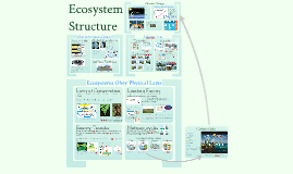 Microbiology: Nutrient Cycles in Ecosystems