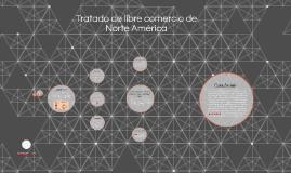 Tratado de libre comercio de Norte America