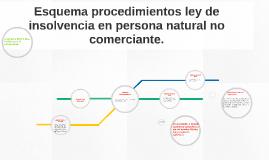 Esquema procedimientos ley de insolvencia en persona natural
