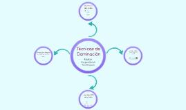 Técnicas de Dominación: Formación UMH