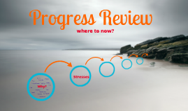 Progress Review
