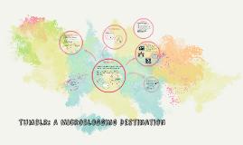 Tumblr: A Microblogging Destination