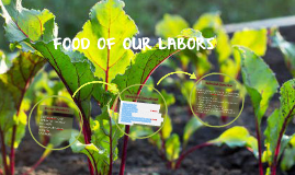 Food of Our Labors