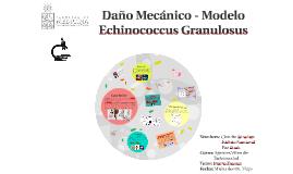 Daño Mecánico - Modelo Echinococcus Granulosus