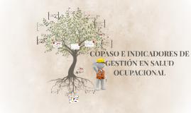 COPASO E INDICADORES DE