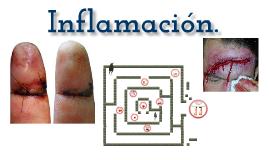 inflamacion..