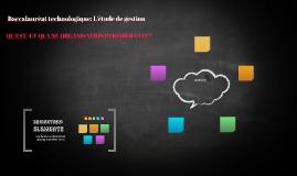 Baccalauréat technologique: L'étude de gestion