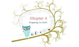 Child Development- Chapter 6