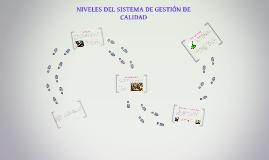 NIVELES DEL SISTEMA DE GESTION DE CALIDAD