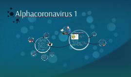 Alphacoronavirus 1