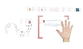 Copy of Copy of Palm Reading